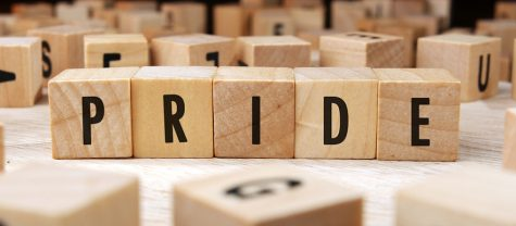Introspection #14: Pride is Complicated